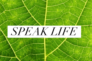 Self-Love Series (Part 4 of 4): Speak Life